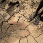 África subsaariana  ciclos de secas. Foto Getty Images